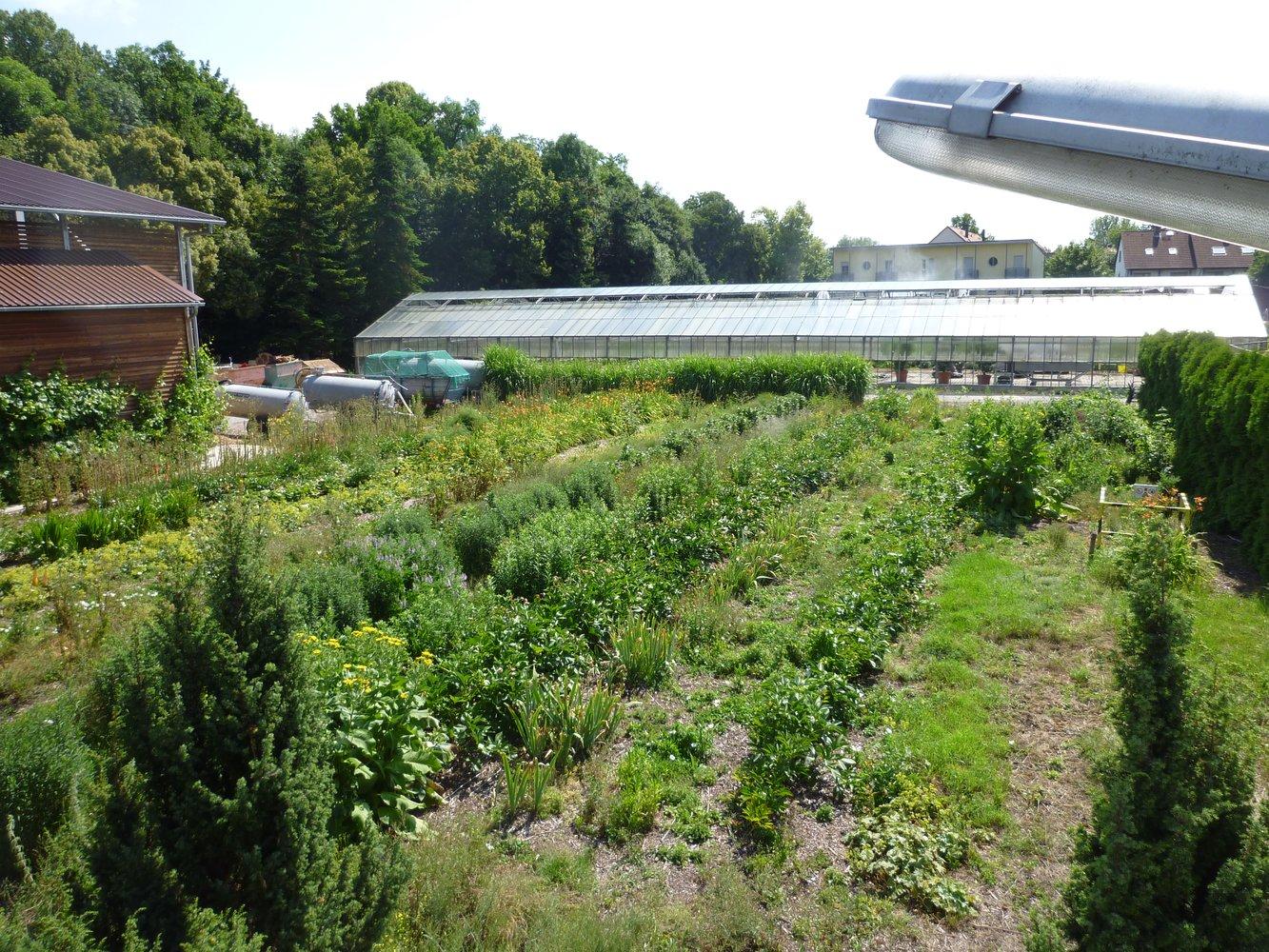 Klausurtagung landesfachgruppe gartenbau - Gartenbau regensburg ...